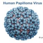 Infección-por-el-Virus-del-Papiloma-Humano-VPH-300x219